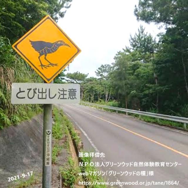 沖縄にしかない道路標識